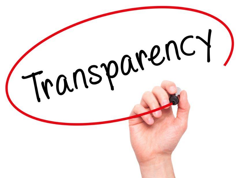 transparent adult webcam sites